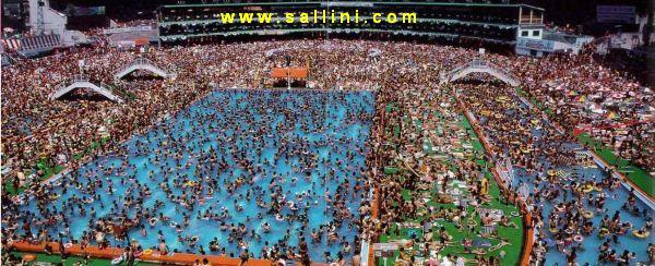 Southern california aquatics scaq swim club chinese men 39 s for Club de natation piscine parc olympique